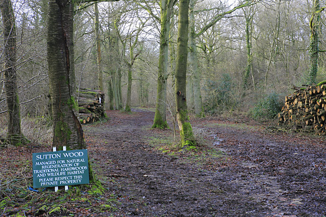 Footpath entering Sutton Wood from Suttonwood Lane