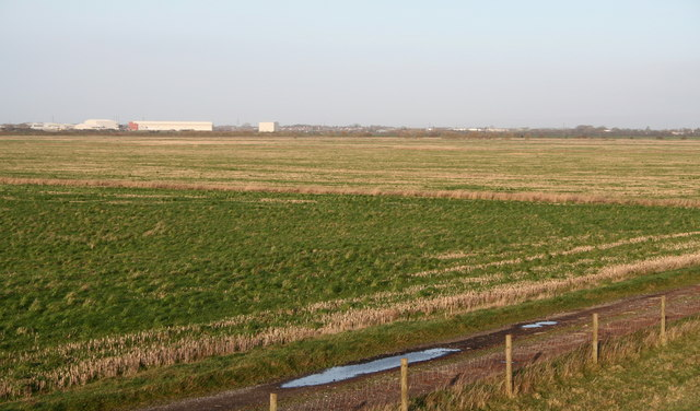 Drained grazing land on the Ribble marshes
