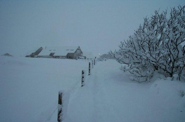 Snow at Daisy Park