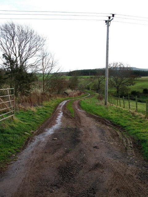 Farm Track at  Littledean Farm, near Ayton