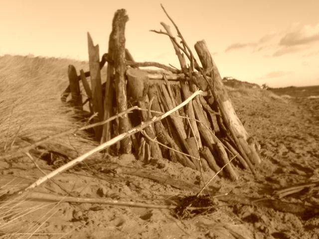 Driftwood windbreaker we built!