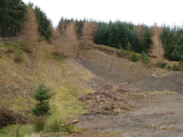 Disused quarry, Glentress Forest.
