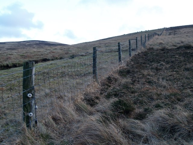 Fence, Dod Hill.