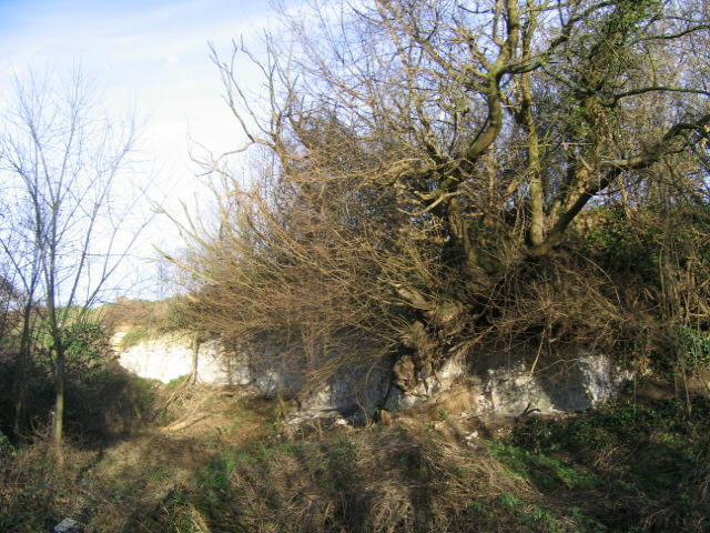 Old chalk quarry, Shipley Hills Road