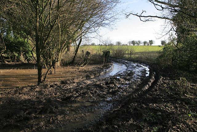 Sea of mud in Gullet Lane