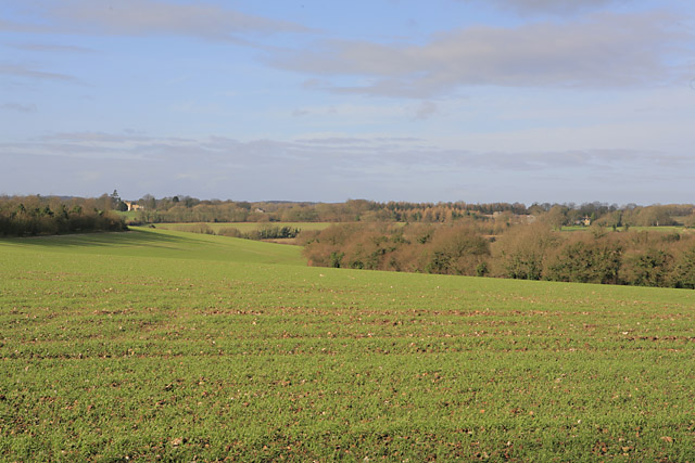 Farmland seen from Bighton Dean Lane