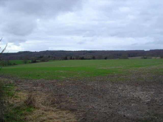 View of downland near Ashmore