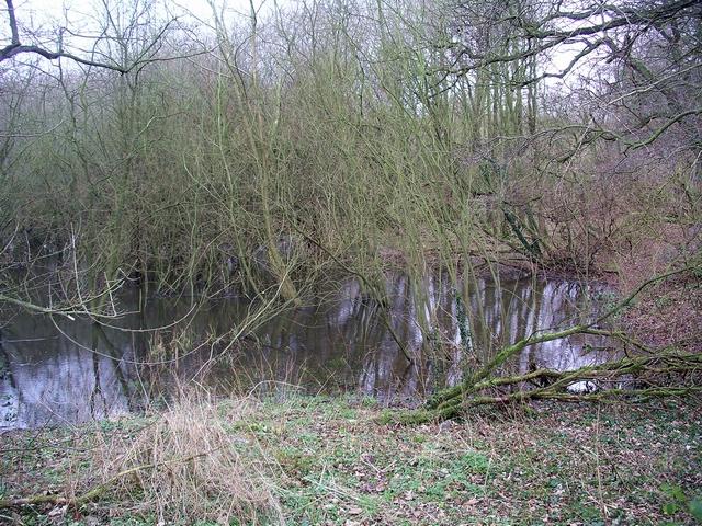 Felley Mill pond