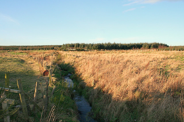 Southerly view along the drainage ditch by Borrodale.