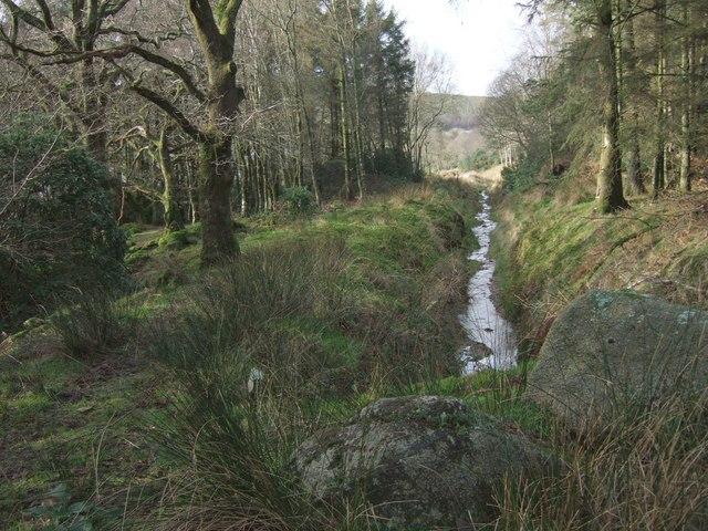 Drain south of Nelder Wood