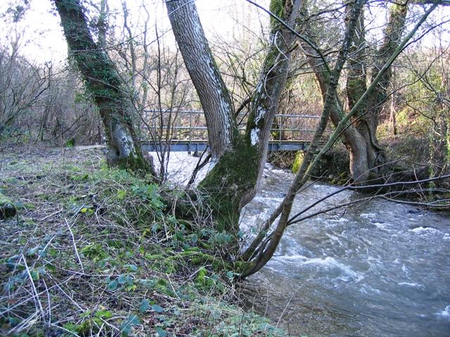 Footbridge over the Afon Alun/River Alyn