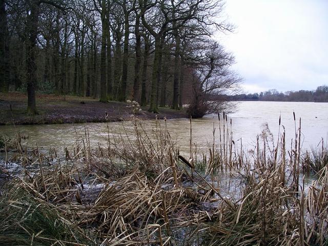 Moorgreen reservoir looking south