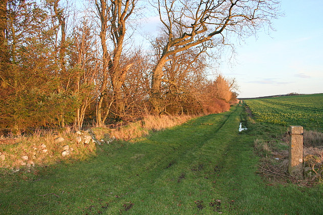 Footpath to the south of Tyrie Mains.