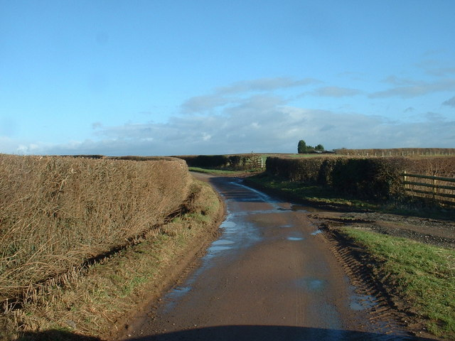 Lane near Osbaston