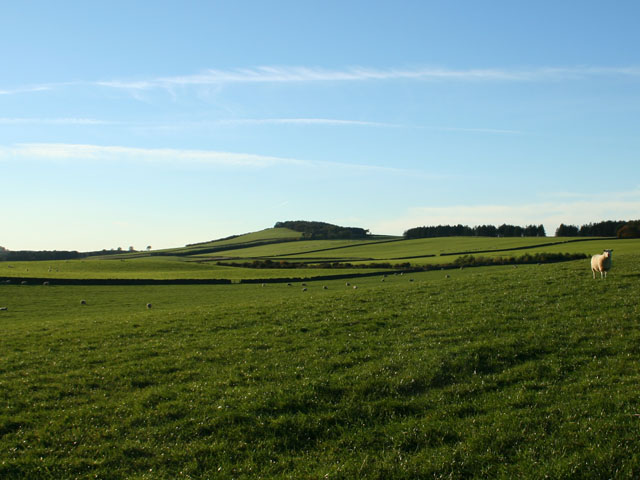 View towards Knock Hill, Greenknowe Farm