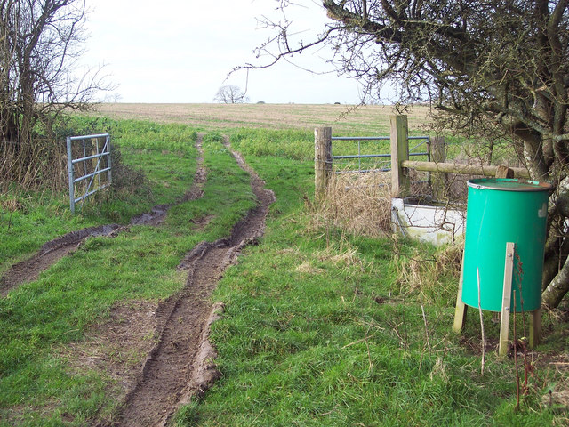 Bridleway above Faulston Hole