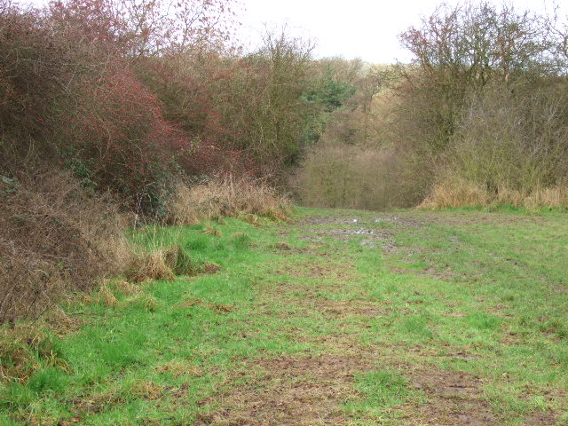Footpath to the Old Railway Trail