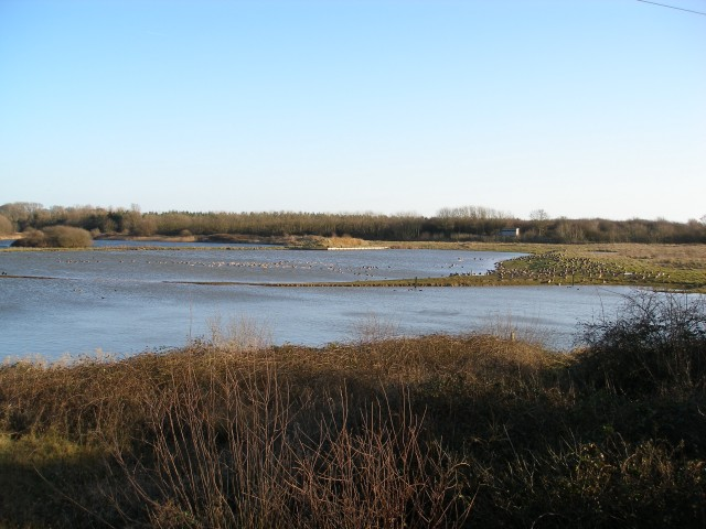 Tophill Low Nature Reserve South Lagoon