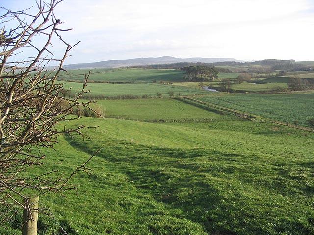Pasture near West Horton