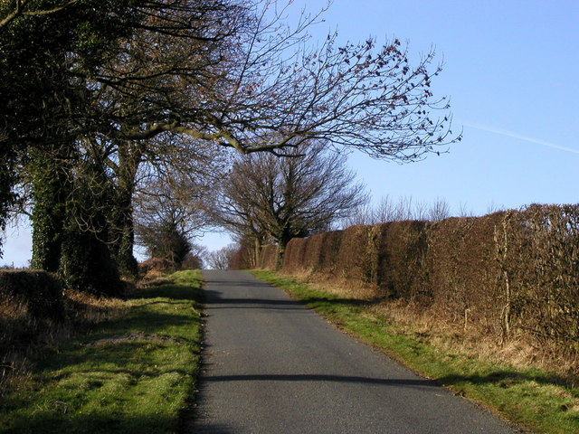 The road to Stock Beck Moor