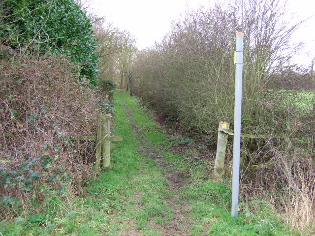 Footpath to New Gorse Fox Covert.