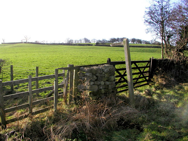 Public Footpath from the road to Stock Beck Moor
