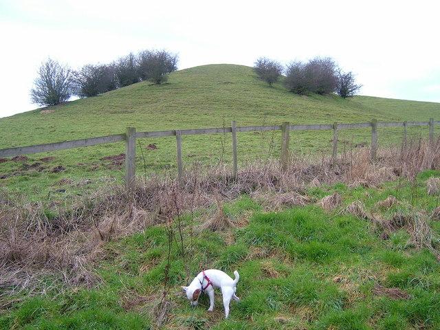 Moxon's Hill
