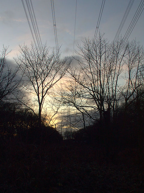 Sunset behind Pylon in Camblesforth Common woods.
