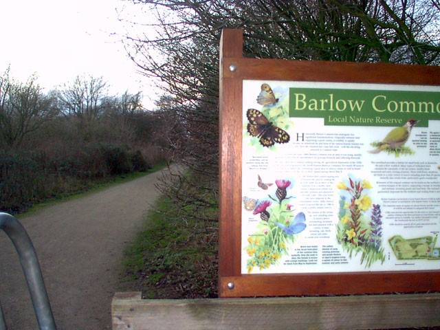 Dismantled Railway Track, Barlow Common Nature Reserve