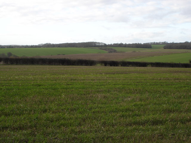 View west from Pimperne Wood