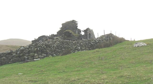 The north-western corner of Barics Mawr