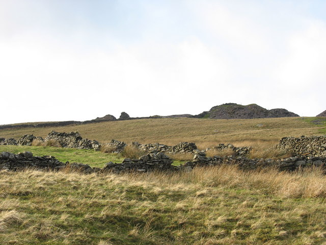 Improved pasture at the head of Ffridd Glynrhonwy