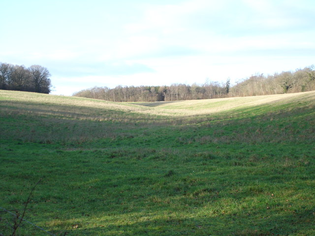 View towards Shale's Coppice