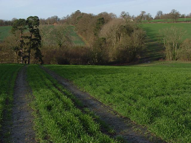 Farmland, Westcot
