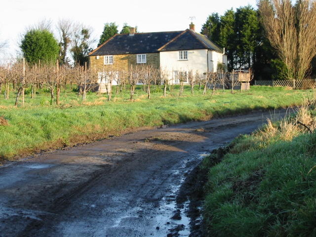 Cottages on a no through road near Cooper Street.