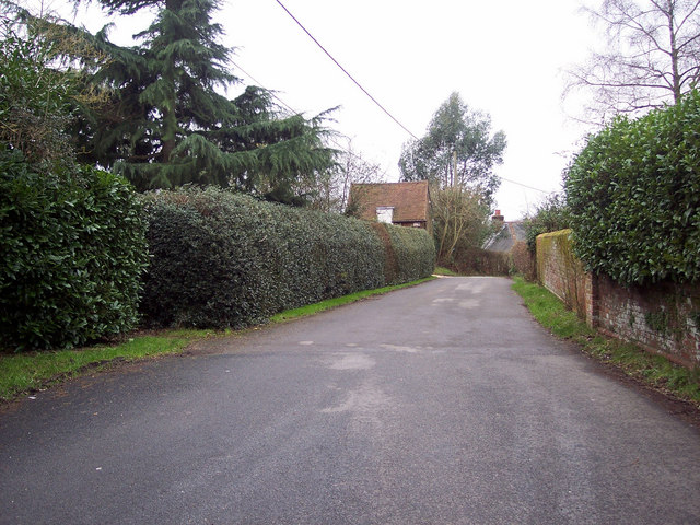Primrose Lane, Morgan's Vale