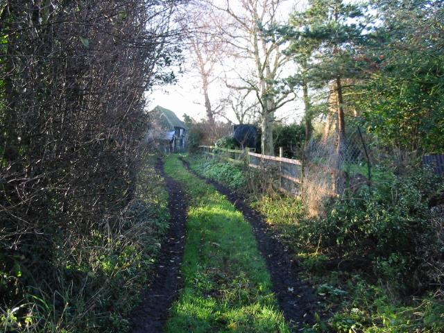 Looking SW along Potts Farm Drove
