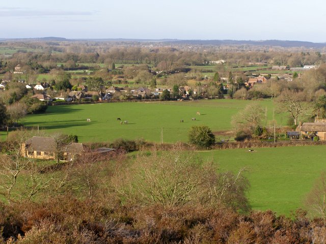 Ibsley from Ibsley Common, New Forest