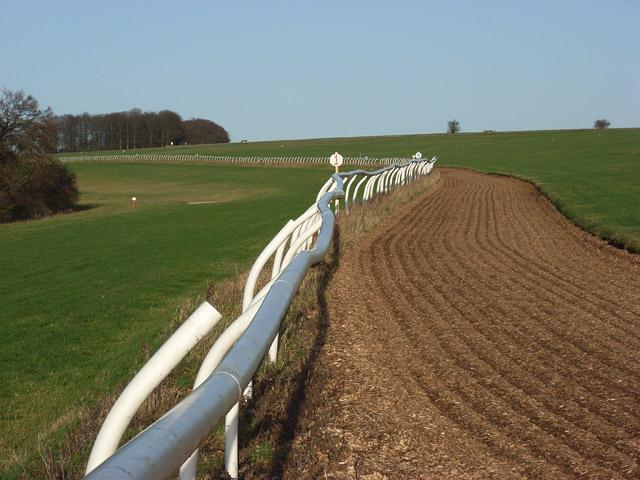 Gallops, Faringdon Road Down