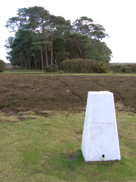 Triangulation pillar on Ibsley Common, New Forest