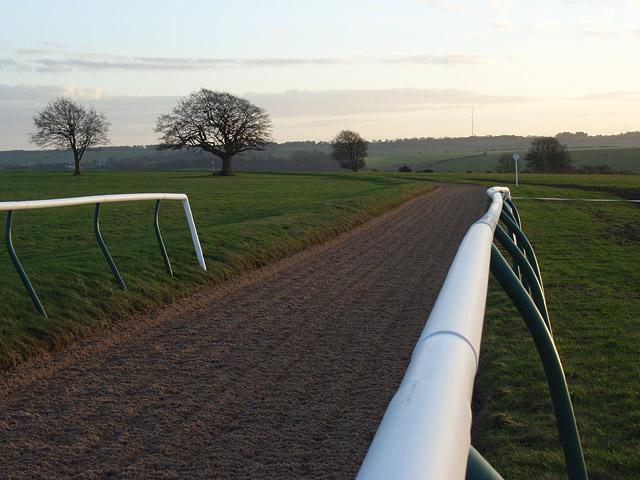 Mandown Gallops