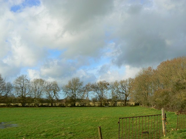 Treeline and clouds near Bradwell Grove