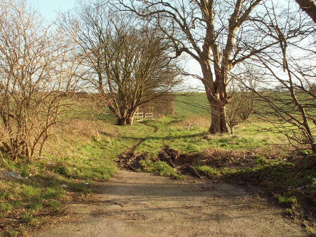 Bridleway leading to Streetly End