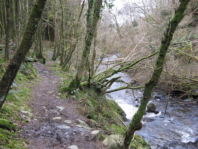 The lower waymarked path, Balloch Wood