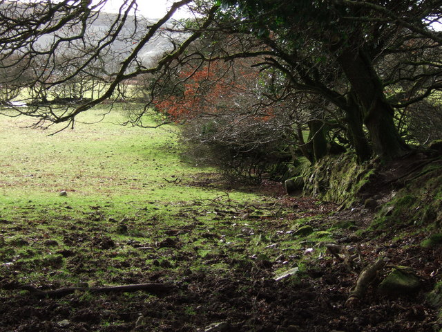 Bank near Broomage