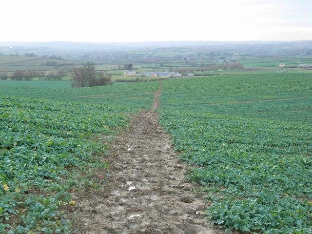 Footpath and Famington Farm