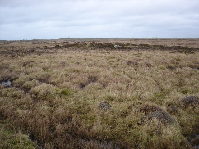 Moorland in the middle of Tiree
