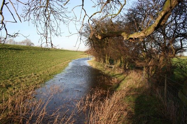 Behind the floodbank