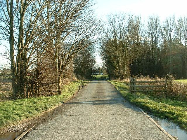 Lane near Maesbrook