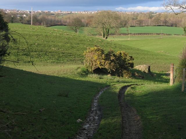 Track  to Plas Newydd Farm